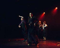 Carnaval-Salsa-Festival-Limoges-2018–show214-1