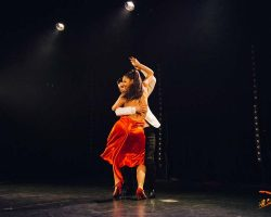 Carnaval-Salsa-Festival-Limoges-2018–show250-1