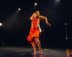 Carnaval-Salsa-Festival-Limoges-2018–show263-1