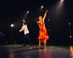 Carnaval-Salsa-Festival-Limoges-2018–show281-1