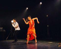 Carnaval-Salsa-Festival-Limoges-2018–show282-1