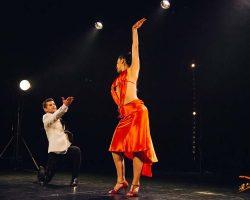 Carnaval-Salsa-Festival-Limoges-2018–show287-1