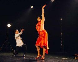 Carnaval-Salsa-Festival-Limoges-2018–show288-1