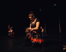 Carnaval-Salsa-Festival-Limoges-2018–show408-1