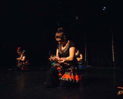 Carnaval-Salsa-Festival-Limoges-2018–show409-1