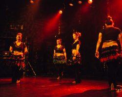 Carnaval-Salsa-Festival-Limoges-2018–show414-1
