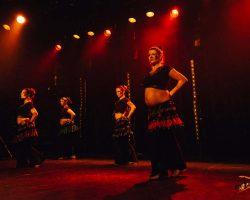 Carnaval-Salsa-Festival-Limoges-2018–show423-1