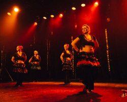 Carnaval-Salsa-Festival-Limoges-2018–show424-1